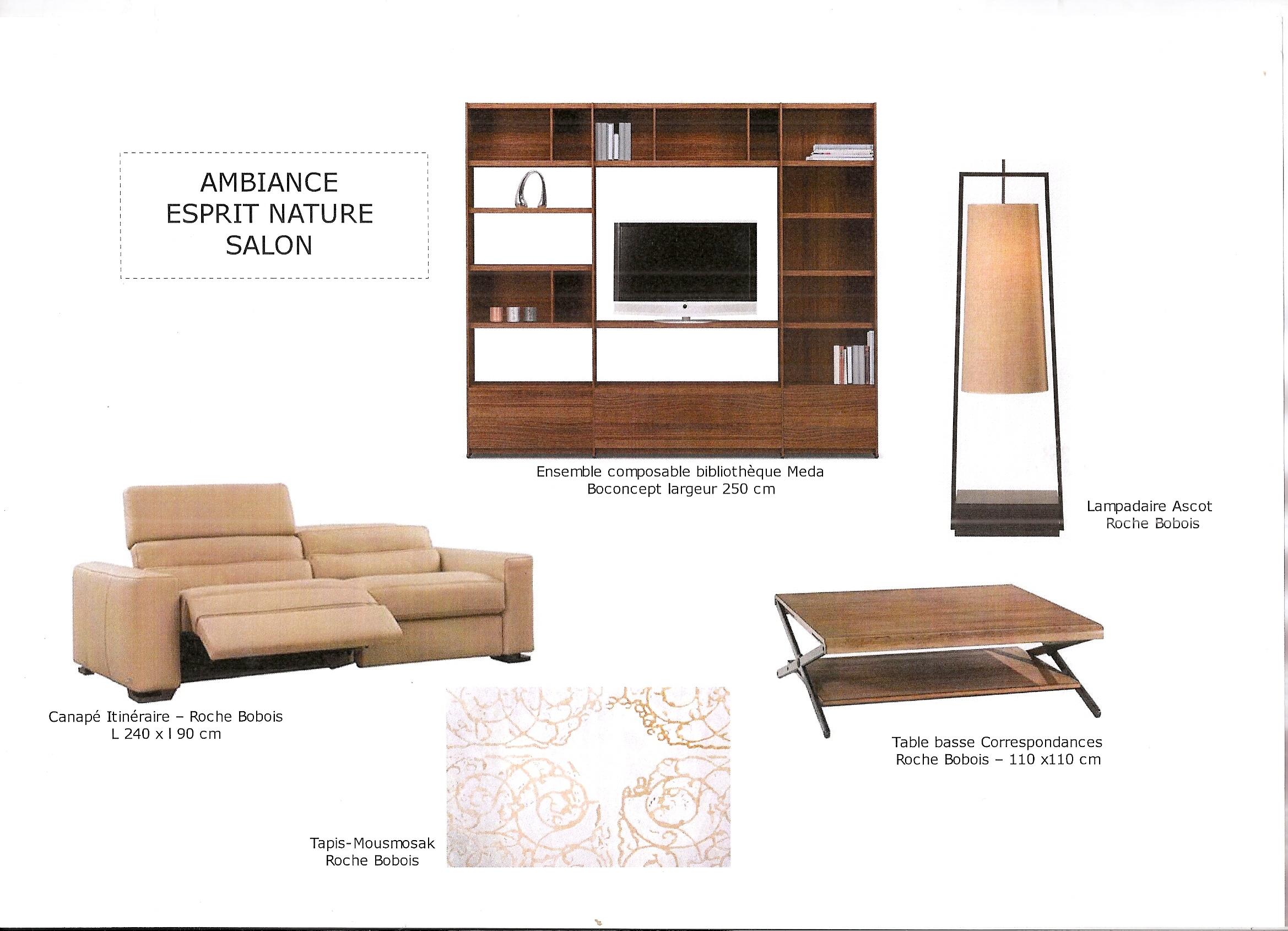 Decoration interieur fdeco agencement - Conseils sur la disposition des meubles pour agrandir un salon ...